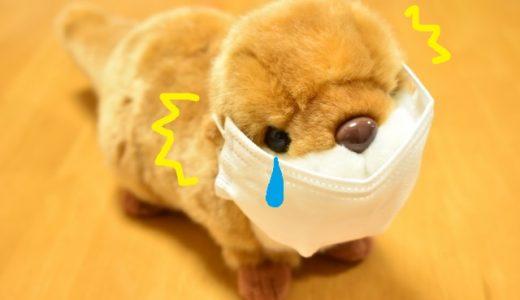 マスクで耳が痛い原因を解消!対策グッズを使って耳が痛くならない方法も!