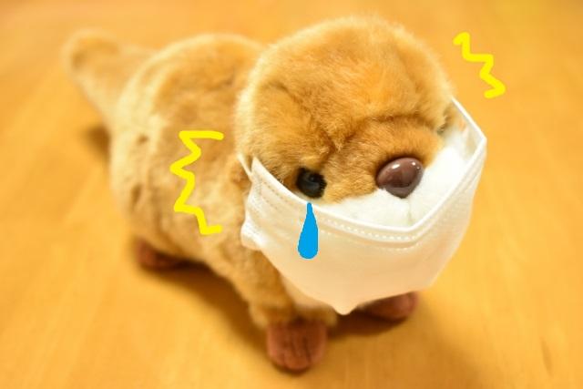 マスク 耳 痛い