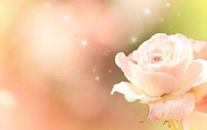 バラの香り サプリ クリスタルローズ