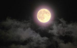 荒城の月 歌詞 意味
