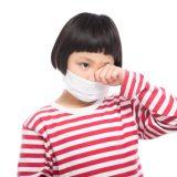 花粉症 乳酸菌 効果