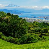 大阪 地震 南海トラフ 前兆