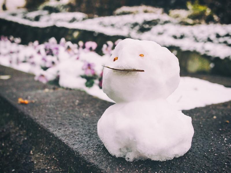 スノーブーツ おすすめ