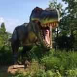 ダイナソー小林 恐竜ガチ勢 バード川上