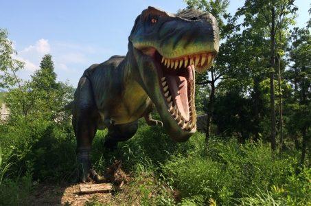 ダイナソー小林(小林快次)先生が恐竜ガチ勢に人気!バード川上とバトル?