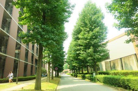 国立大学っぽい名前の私立大!都道府県名が大学名でも私立!奈良や青森の国立大は?