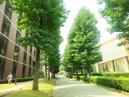 首都大学東京 東京都立大学 なぜ