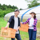 金足農業 文化祭 いつ