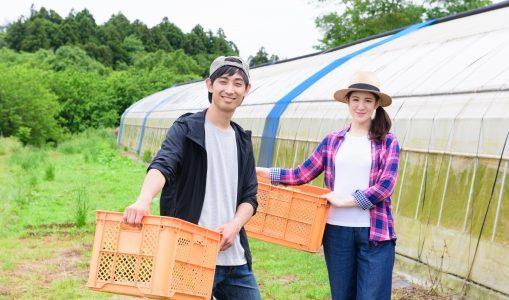 金足農業の文化祭(金農祭)2018はいつ?一般公開で金農ナインに会える?