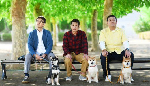柴公園(ドラマ)柴犬3匹の名前は?パパ役キャストは誰?あらすじや映画化も!