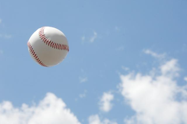 高校野球 春 夏 違い