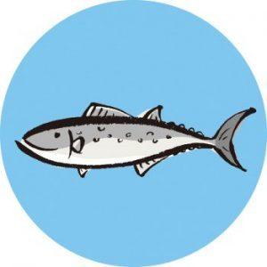 魚へん 春 漢字