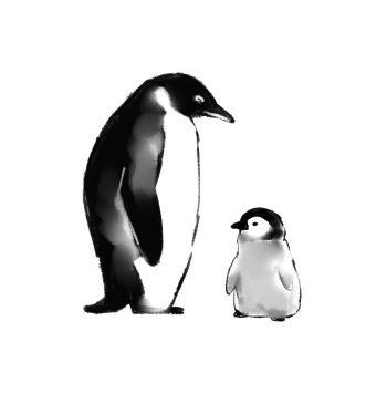 皇帝ペンギン ヒナ 子育て