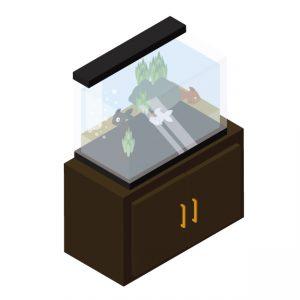 熱帯魚 飼育 費用 水槽