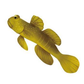 魚へん 秋 漢字