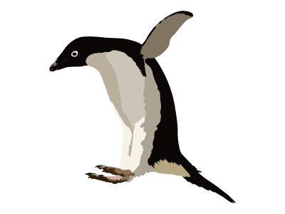 アデリーペンギン 性格 怖い