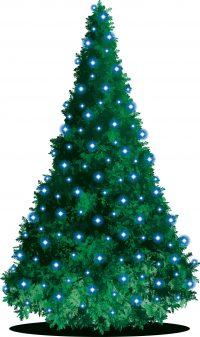クリスマス もみの木 意味
