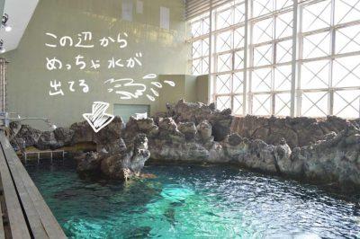 須磨海浜水族園 神戸 水族館 波