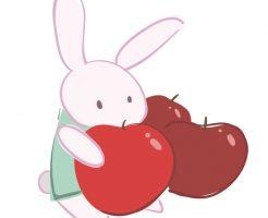 りんご 皮 食べる 栄養