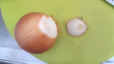 玉ねぎ 皮 むき方 栄養