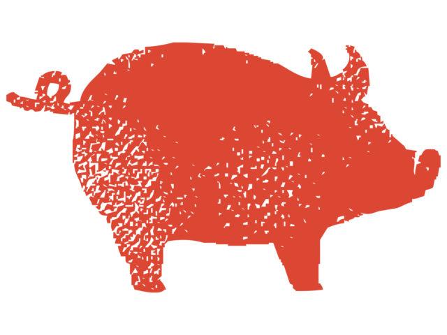 豚骨 栄養 効果