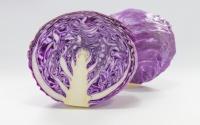 キャベツ 白菜 レタス