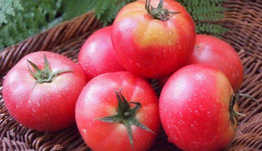 トマトダイエットの効果は?栄養で健康的痩せる方法とおすすめスープレシピ!