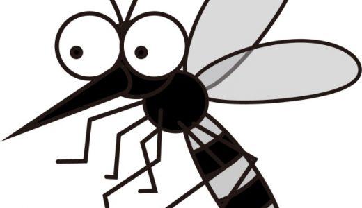蚊に刺されやすい人は?血液型や体温?体質や原因は?刺されにくい対策!