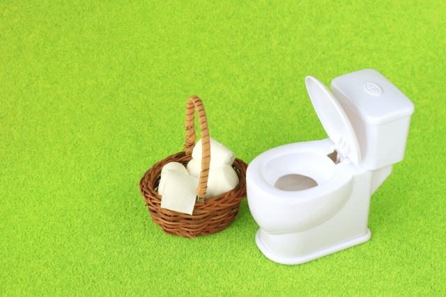 トイレ掃除 風水 運気